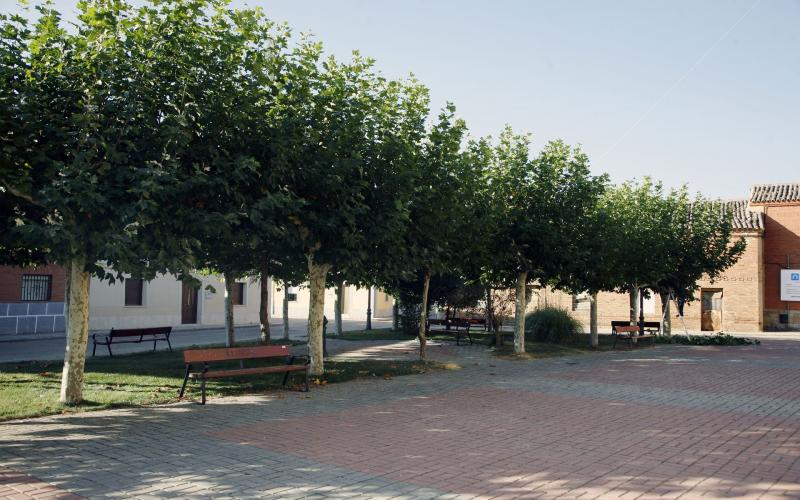 Plaza Mayor de Ribas de Campos